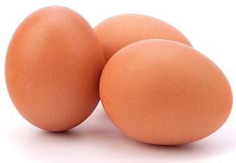 بيض احمر بورصة البيض بيض الحمامى
