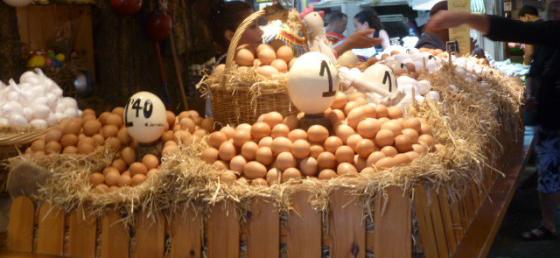منتجات-بيض-الحمامى افضل اسعار البيض