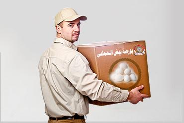 توزيع البيض - بورصة البيض الحمامى للبيض